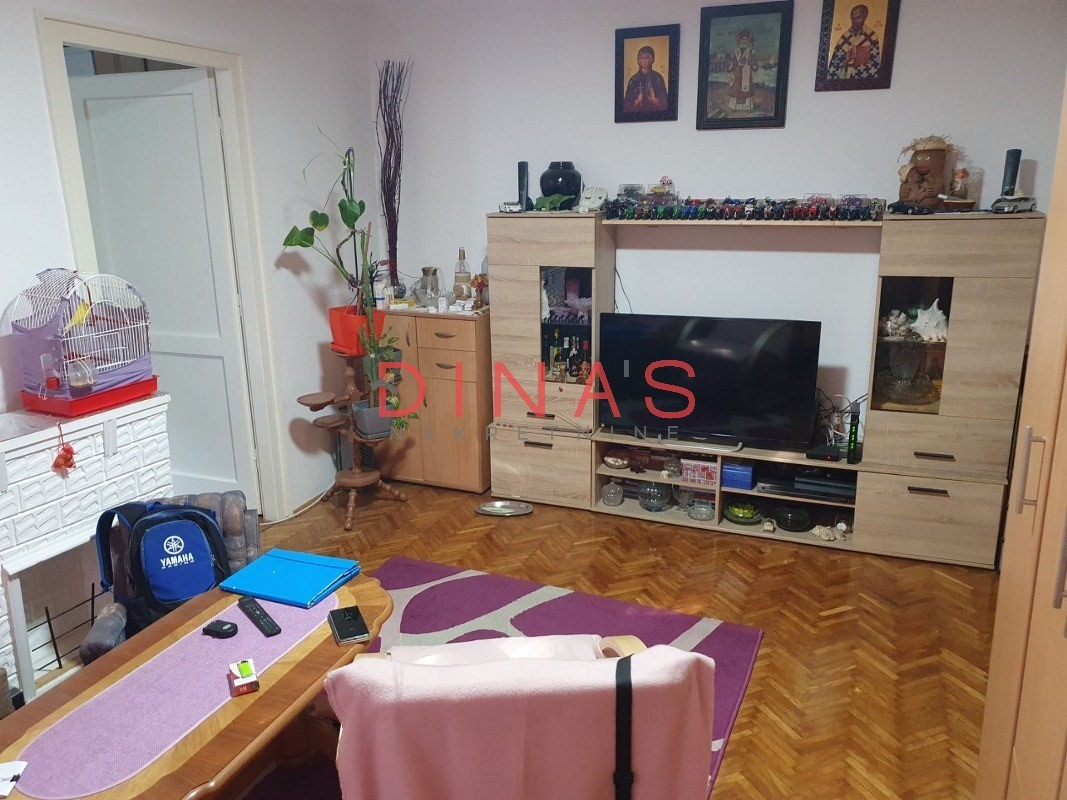 DETELINARA STARA, NOVI SAD, 1015289