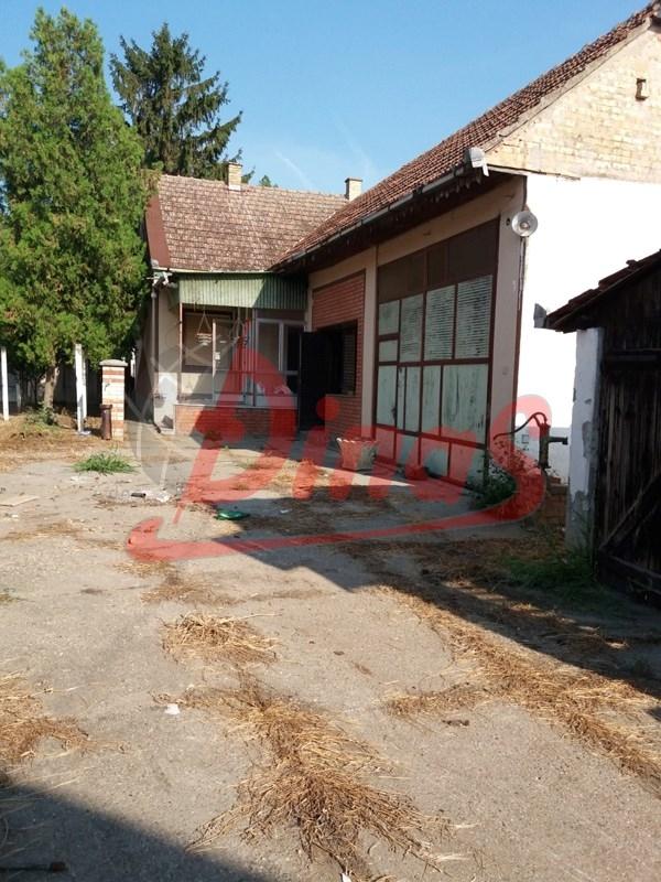 RUMENKA, RUMENKA, 3011292
