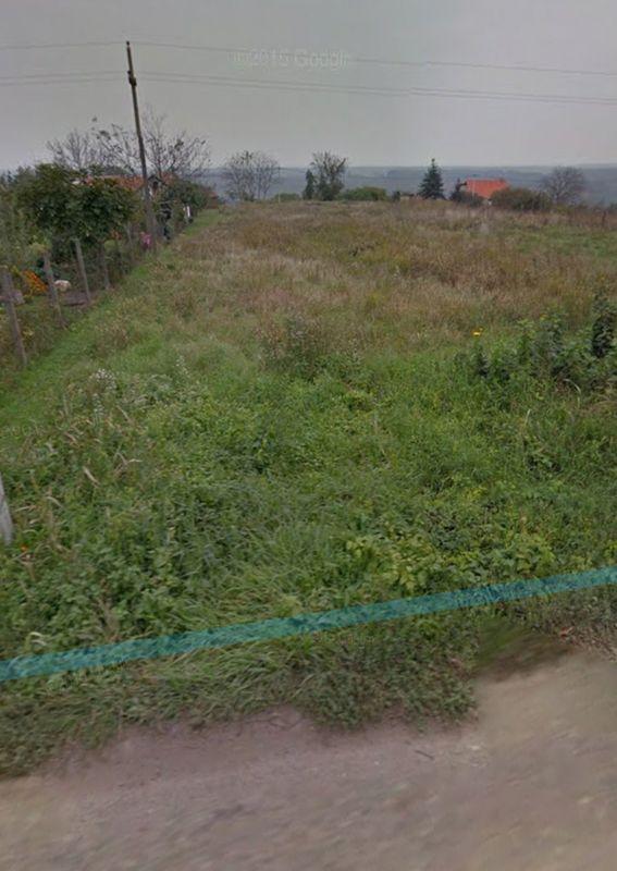 BUKOVAC, PETROVARADIN, 7009519
